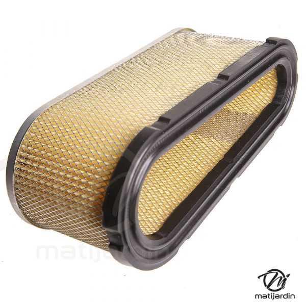 filtre  u00e0 air pour moteur briggs et stratton 493909 - 496894